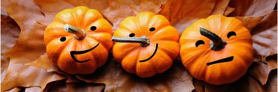 14 octobre : Journée Portes Ouvertes à la résidence l'Ecrin Vert à Auderghem